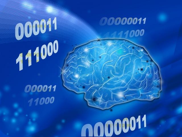 子供英語の教え方と脳科学