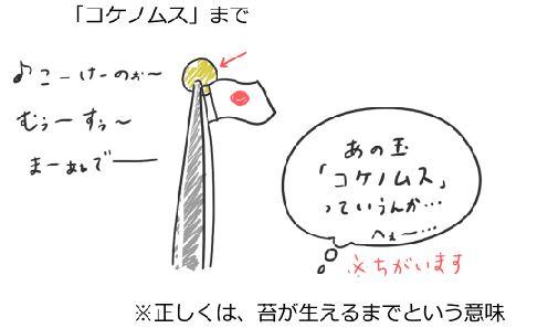 日本語ですら間違える