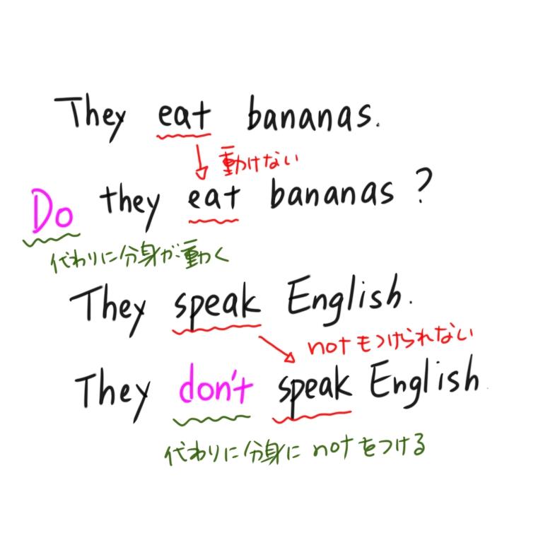 一般動詞の疑問文、否定文の作り方